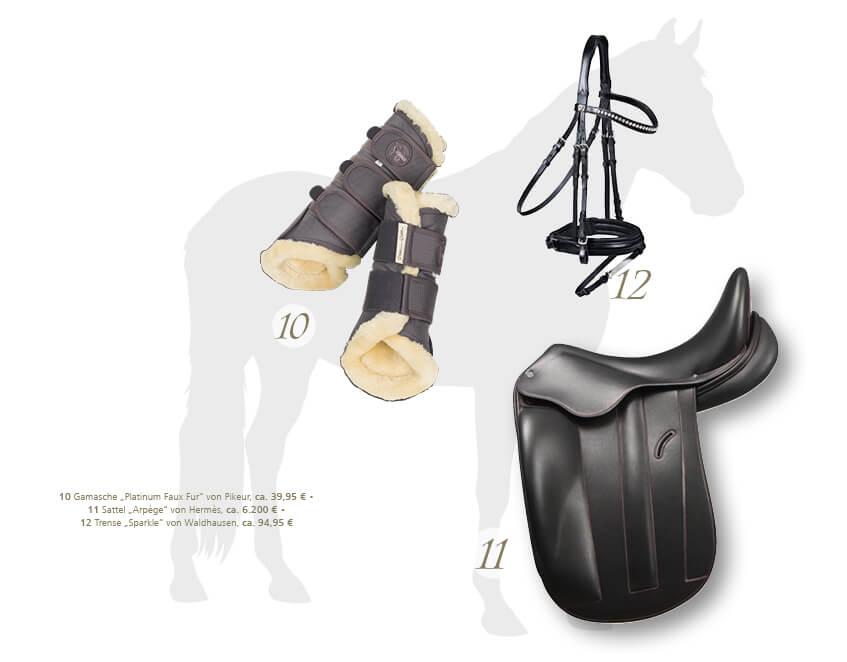 847x662px_Pferd-Reiter3